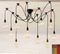 Industrial Style Stretched Branch Simple Decorative Chandelier